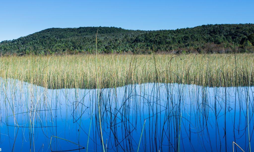 Lago Chaiguata (Parque Tantauco)